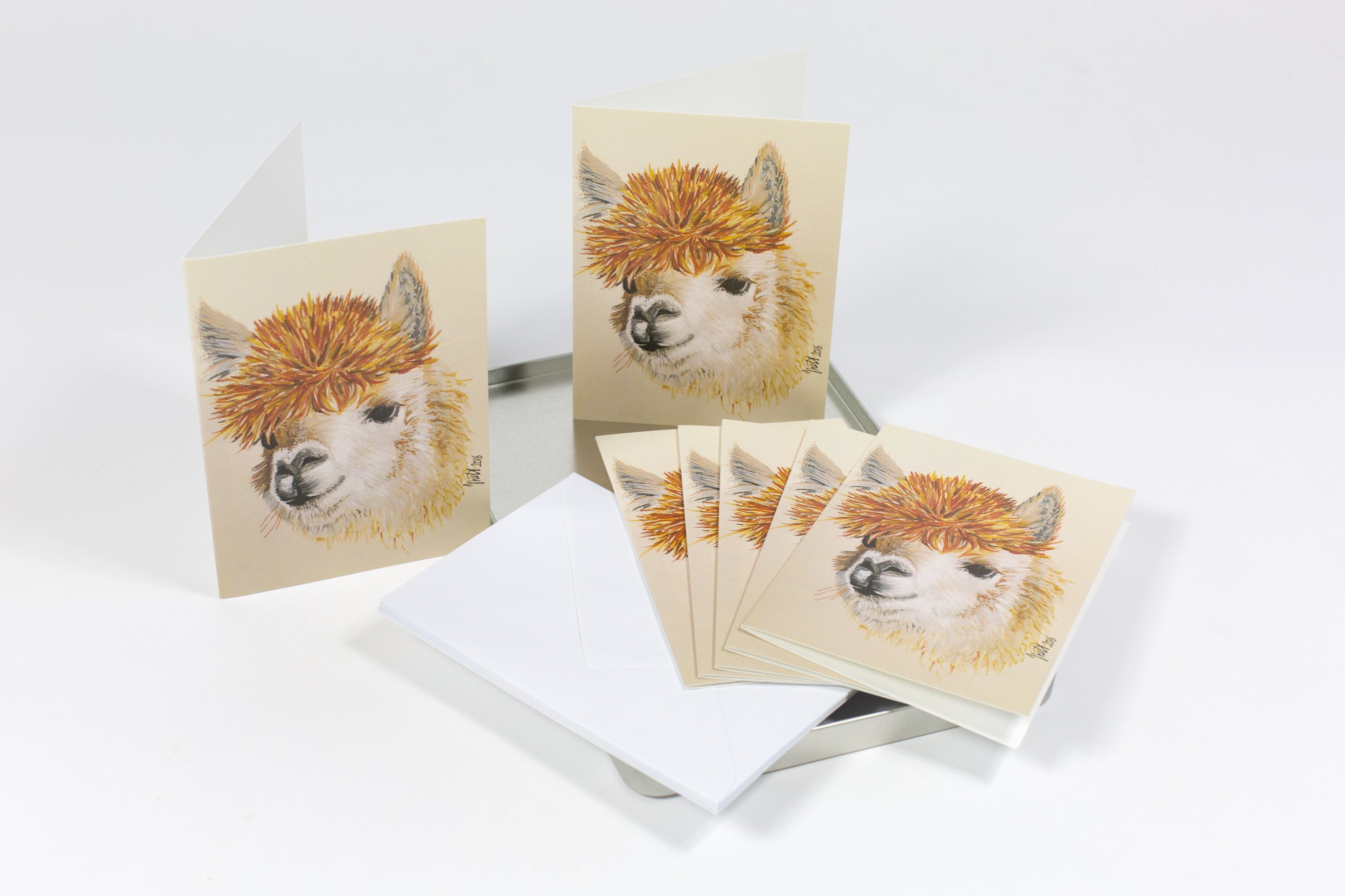 note cards in a tin