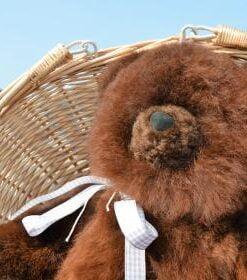 teddy bear in alpaca fur