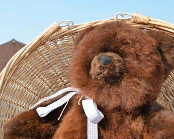 teddy bear in alpaca fur