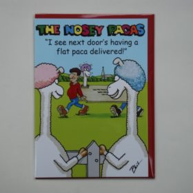 greeting cards nosey pacas