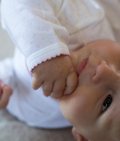 pima cotton baby wear